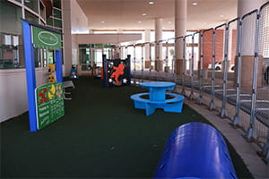 Child Life Zone Denver Health Playground