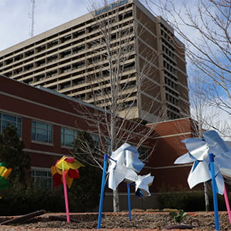 pinwheels to celebrate discharged COVID-19 patients at Denver Health